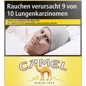 Camel Yellow BP 6XL (4 x 53er)